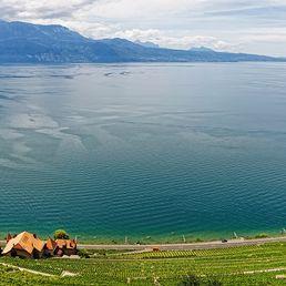 Lac Léman en panoramique
