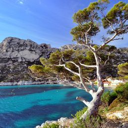 Visit the Calanques National Park: what are the activities to do?