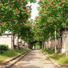 Se loger dans le quartier du Père Lachaise à Paris