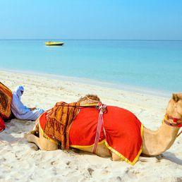 Appart hotel aux Emirats Arabes Unis