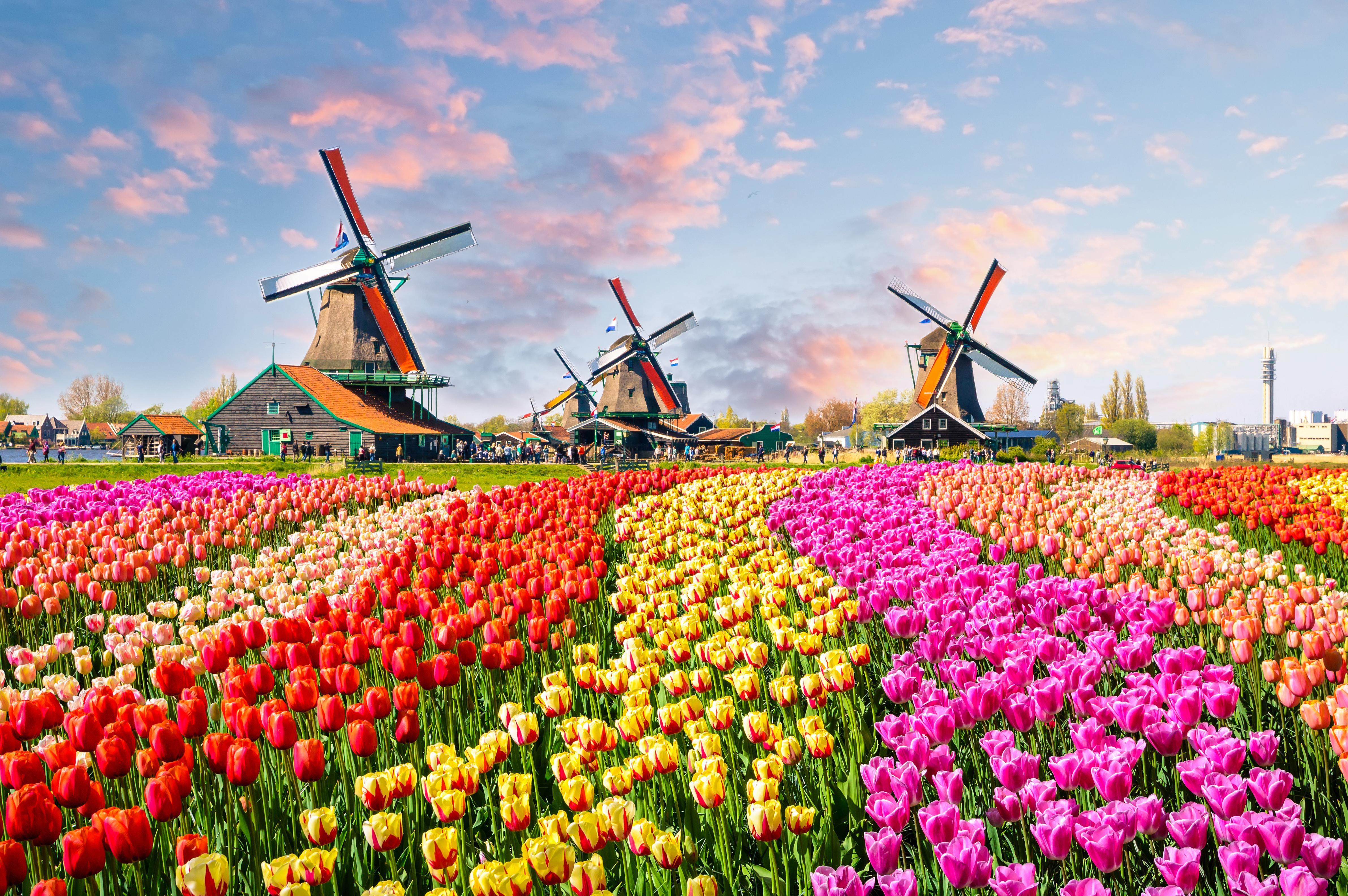 Appart hotel au Pays-Bas